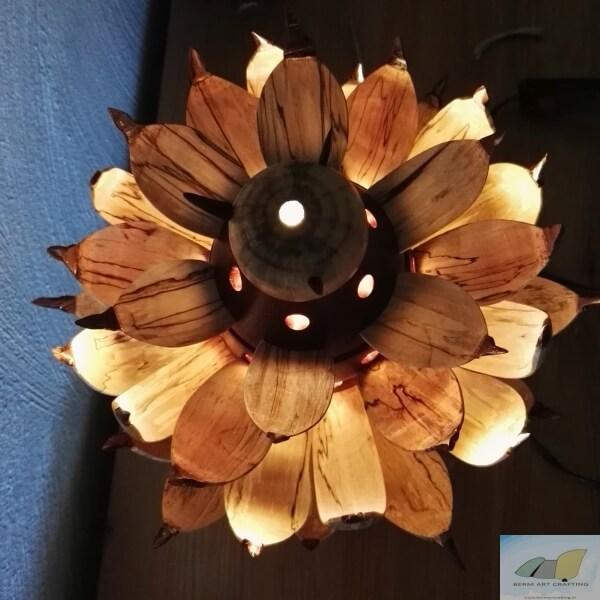 Apen Schemer:  een stralende bloem